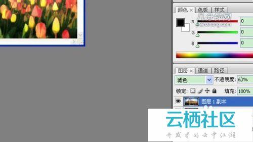 PS技巧:把普通照片打造油画风格-
