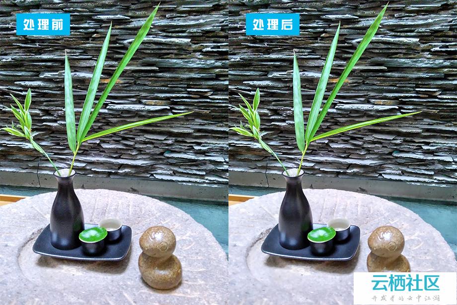 三种快速消除图片噪点的小技巧-ps怎么消除噪点