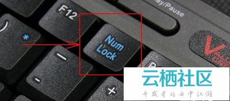 笔记本键盘字母怎么变数字-笔记本键盘字母错乱