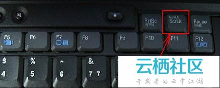 笔记本键盘字母怎么变数字-笔记本键盘字母失灵